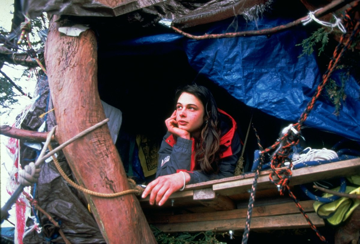 Джулия Хилл в своем убежище в кроне